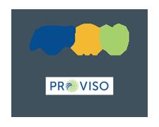 ProViso Consulting Empowering Success